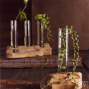 Roost Driftwood Vases