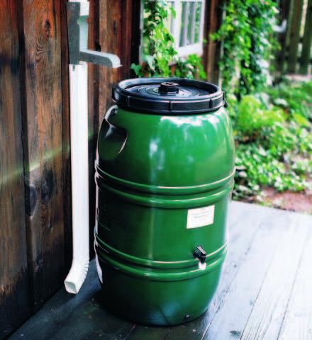 Rain Barrel and Diverter