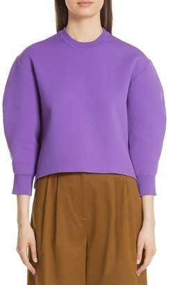 Tibi Sculpted Sleeve Sweater