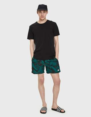 Trunks Bather Tropical Palms Swim in Black