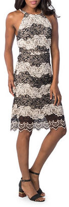 Kensie Two-Tone Embroidered Lace Dress $99 thestylecure.com