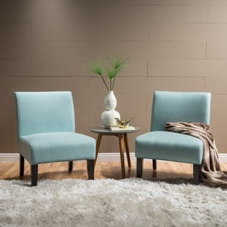 Noble House Cassie Light Blue Fabric Accent Chair (Set of 2)