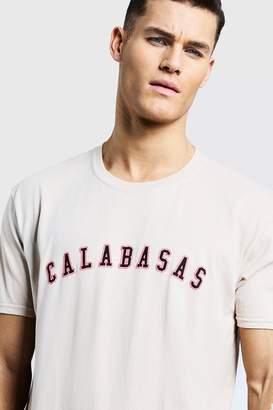 boohoo Loose Fit Calabasas High Build Print T-Shirt