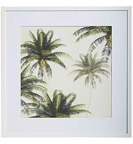 Paloma Living Coconut Palm Wall Art