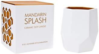 D.L. & Co. Mandarin Splash Ceramic Candle (14OZ)