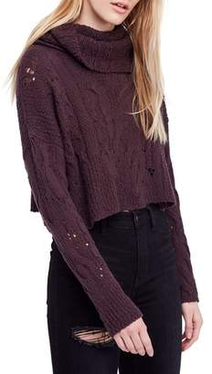 Free People Shades of Dawn Crop Sweater