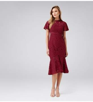 Ever New Venice Lace Midi Dress