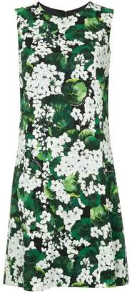 Dolce & Gabbana white geranium printed cady dress