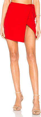 Privacy Please Miller Skirt