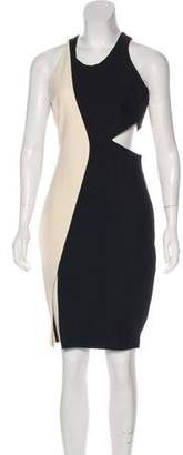Elizabeth and James Colorblock Knee-Length Dress
