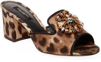 Dolce & Gabbana Leopard-Print Slide