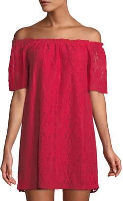 BB Dakota Erica Lace Off-the-Shoulder Mini Dress
