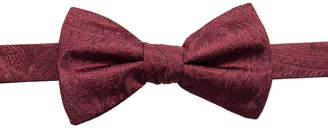 Ryan Seacrest Distinction Men Ramapo Paisley Pre-Tied Silk Bow Tie