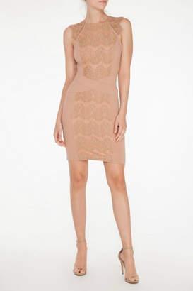 Mystic Lace Inset Dress