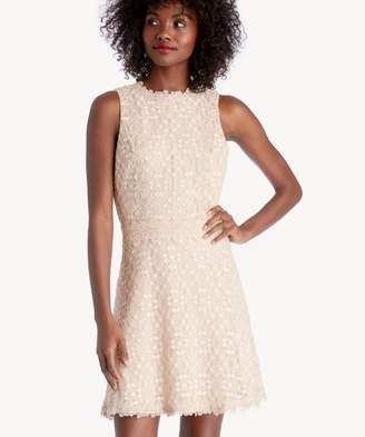 Sole Society Mock Neck Fit & Flare Lace