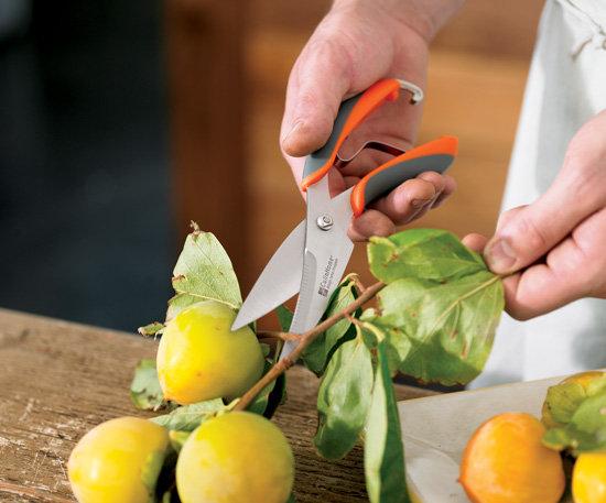 Nizor Scissor Knife