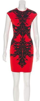 Alexander McQueen Embroidered Mini Dress Red Embroidered Mini Dress