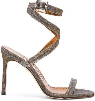 Manolo Blahnik Newfi Sandals