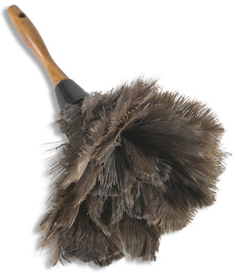 Wood Handled Ostrich Feather Duster