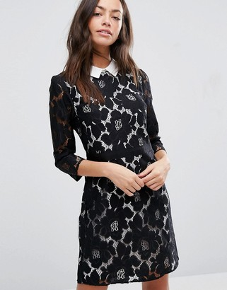 Oasis Lace Collar Dress $83 thestylecure.com