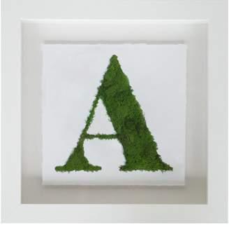 Oliver Gal Serif a Nature Moss 3D Live Art