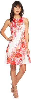 Maggy London Shadow Garden Flower Cotton Sateen Fit Flare Women's Dress