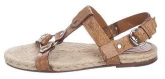 Gucci Crocodile Jute-Trimmed Sandals