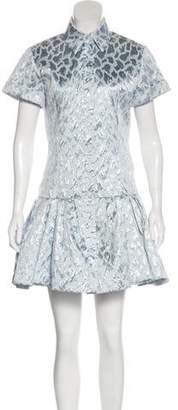 Natasha Zinko Metallic Mini Dress