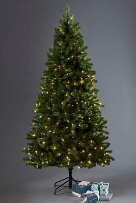 Next 400 LED Collection Luxe Douglas Fir 7ft Christmas Tree