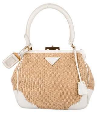 Prada Raffia Leather-Trimmed Frame Bag