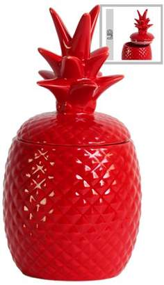 Urban Trends Collection: Ceramic Pineapple Canister Gloss Finish