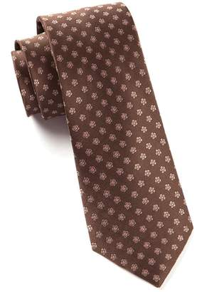 The Tie Bar Anemones