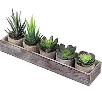 Alöe Supla Set of 5 Mini Fake Succulent Cactus Potted Plant Arrangements Decorative Assorted Potted Artificial Succulents Plants in Gray Pots Succulent Plants Wood Planter Arrangement