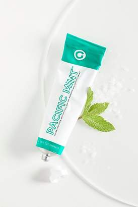 Co Goodwell Pacific Mint Toothpaste