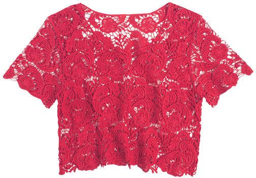 Crop Lace Short Sleeve
