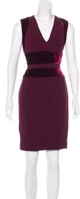 Elie Saab Velvet-Accented Knee-Length Dress