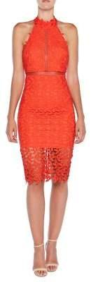 Bardot Gemma Lace Halter Neck Dress