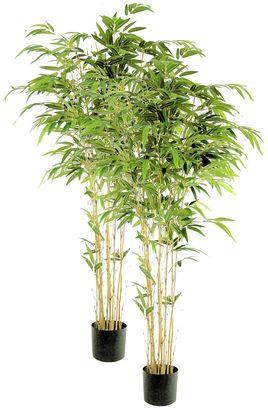 Rogue Artificial Bamboo Nitida Tree (Set of 2)