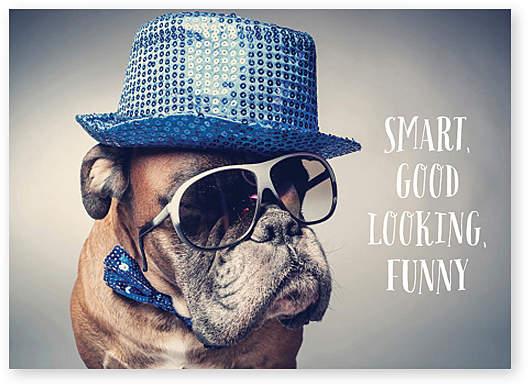 Boxer Dog Birthday Card - Set of Six