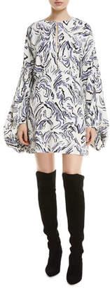 Camilla And Marc Fonda Long-Sleeve Printed Mini Dress