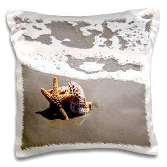 3dRose Print of Star Fish And Seashell On Beach, Pillow Case, 16 by 16-inch
