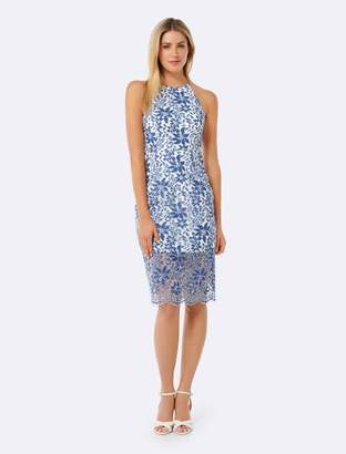 Forever New Lauren Lace Pencil Dress - Blue and White - 4