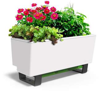 Glowpear Self-Watering Mini Garden Bench