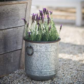 Graham and Green Malmesbury Small Planter