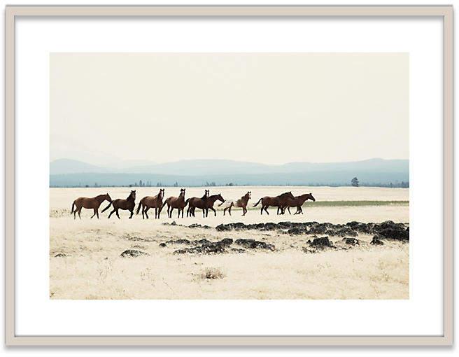 Wild Horses I - Christine Flynn - 30.5