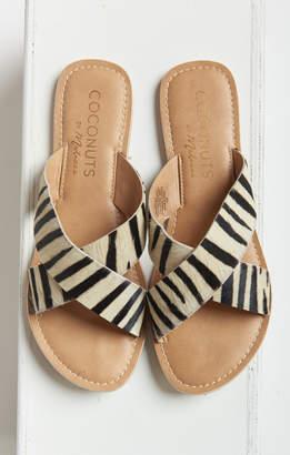 Show Me Your Mumu Matisse ~ Pebbles Slide Sandals ~ Zebra