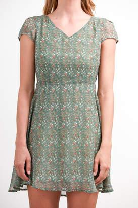Fashion Pickle Print Summer Dress