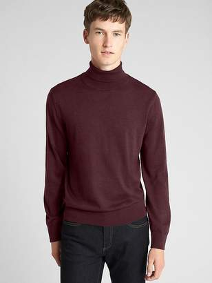 Gap Turtleneck Pullover Sweater in Pure Merino Wool