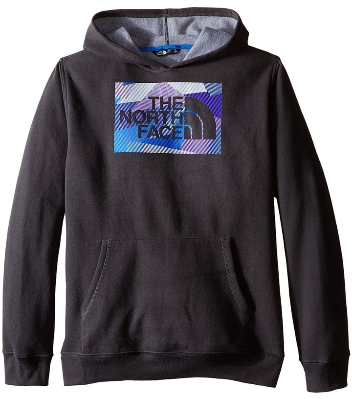 The North Face Kids Logowear Pullover Hoodie (Little Kids/Big Kids)