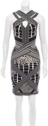 Herve Leger Bodycon Printed Dress
